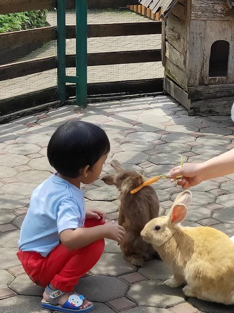 12 Alasan Kamu Wajib Banget Dateng Ke The Great Asia Afrika Lembang Bandung