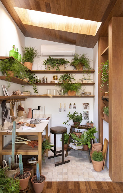 potting area with workbench and shelves above, botanical prints clipped to wall, skylight