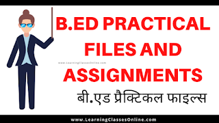 b.ed practical files ccs university,b.ed practical files crsu 2nd year,b.ed project file in hindi,b.ed 2nd year files,b.ed ict practical file, b.ed practical file front page,practicals in bed,understanding the self b.ed file in hindi,b.ed assignment file,observation file for b.ed in hindi,