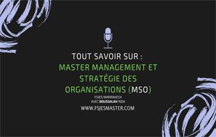 Tout savoir sur Master Management et Stratégie des Organisations (MSO) - Fsjes Marrakech