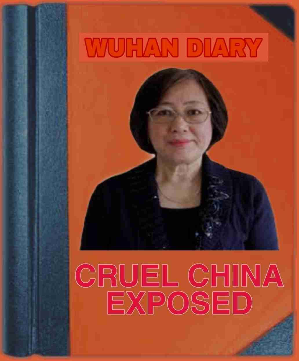 Wuhan Diary: Reality Of China