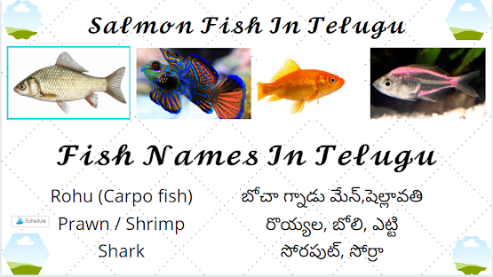 Fish Names In Telugu