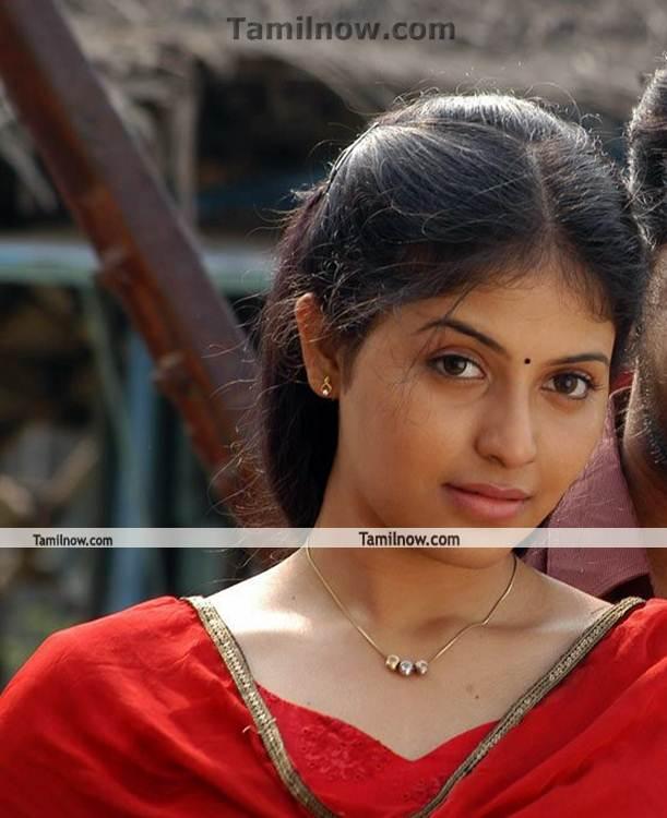 Tamil Cinema : February 2013
