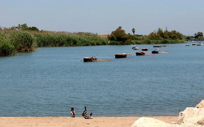Barcas y patos en l'Estany de Valencia