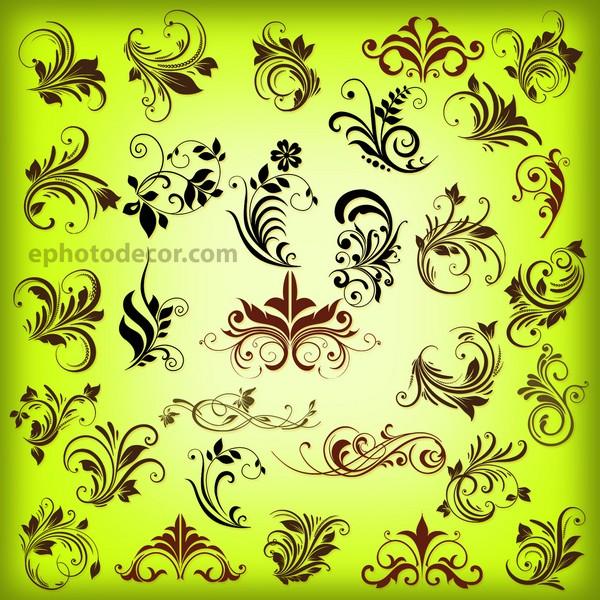 Floral Kolka Decoration Elements png