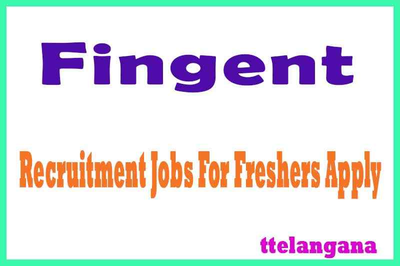 Fingent Recruitment Jobs For Freshers Apply