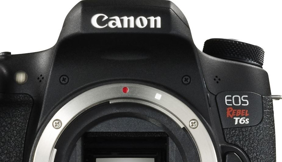 Top 4 Accessories for Your New DSLR Camera