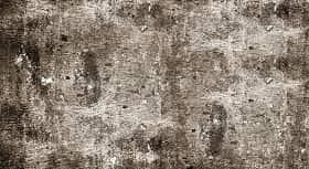 Parenkim kayu merupakan sel-sel hidup yang terdapat di dalam kayu gubal yang berfungsi untuk menyimpan makanan cadangan serta sebagian sel sebagai pengangkutan dengan bentuk yang pendek (Sunardi, 1977). Jenis-jenis parenkim kayu terdiri atas 3 jenis yaitu parenkim jari-jari, parenkim longitudinal, dan parenkim epital.