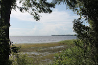 Vistas del Saint Johns River