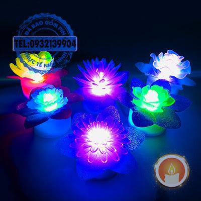 Đèn led hoa chuyển màu