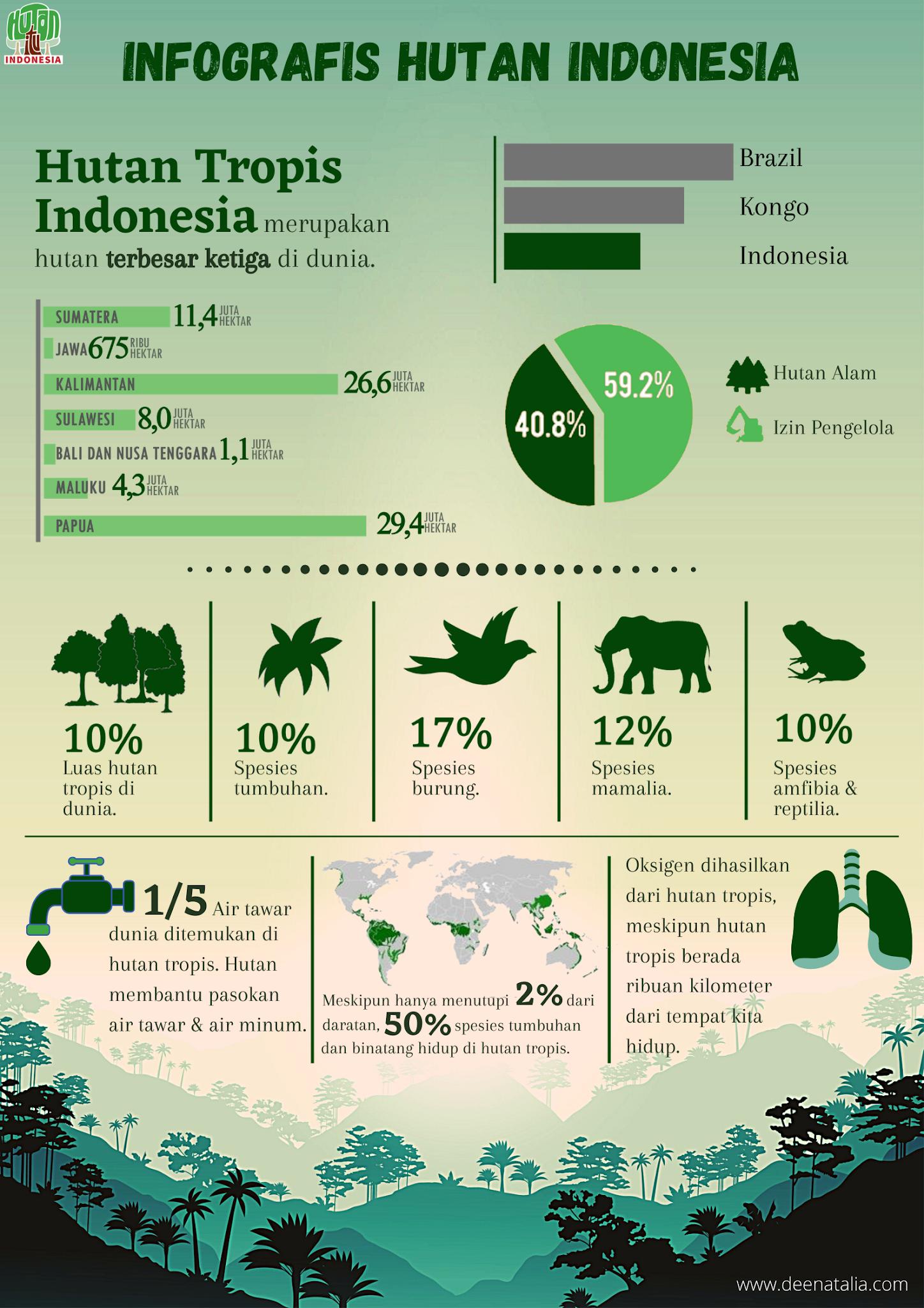 Infografis Hutan Indonesia