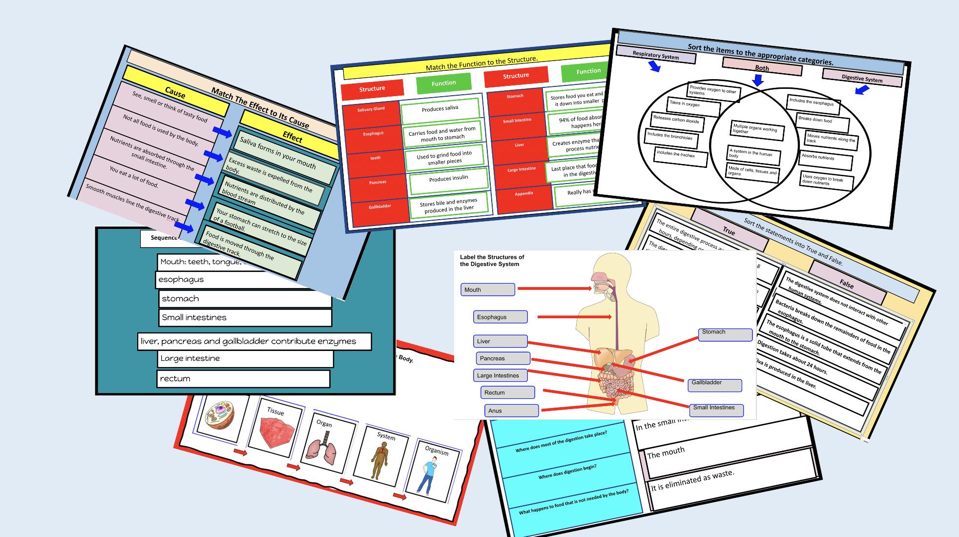 Teaching Science With Lynda: Digestive System Online Unit ...