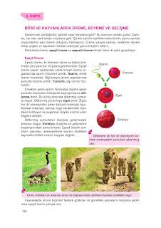 8. Sınıf Fen Bilimleri Ders Kitabı Cevapları Tutku Sayfa-151
