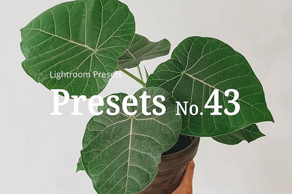 10 Preset Lightroom Light Botanical dành cho cây cảnh
