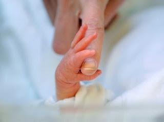 Preemie baby hand