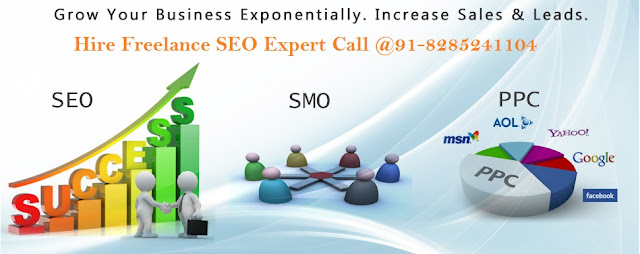 Freelance SEO expert in New Delhi, Hire SEO Expert in Gurgaon