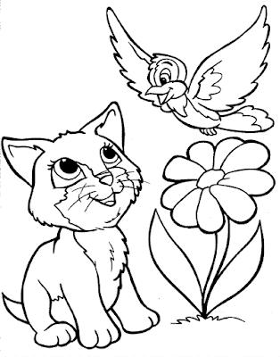 Gambar Sketsa Kucing dan Burung