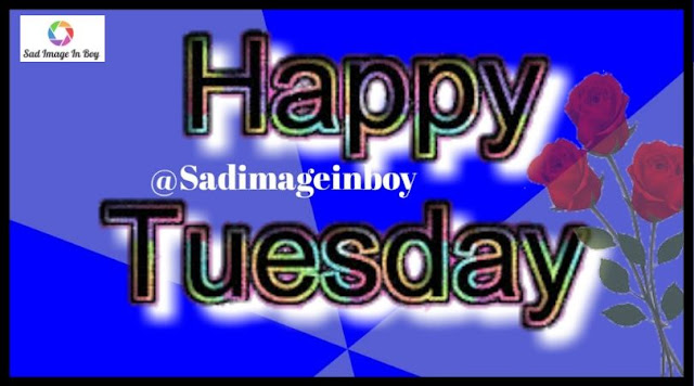 Happy Tuesday images   tuesday greetings, tuesday good morning images, happy tuesday clip art