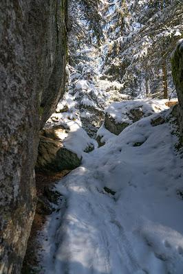 Rundweg Felswandergebiet  Wandern im Nationalpark Bayerischer Wald 19