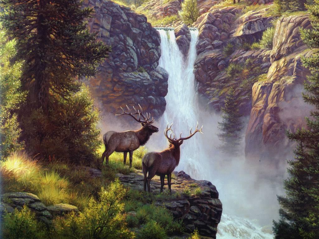Fondos de pantalla de hermosos paisajes de cascadas - Nature and animals wallpaper ...