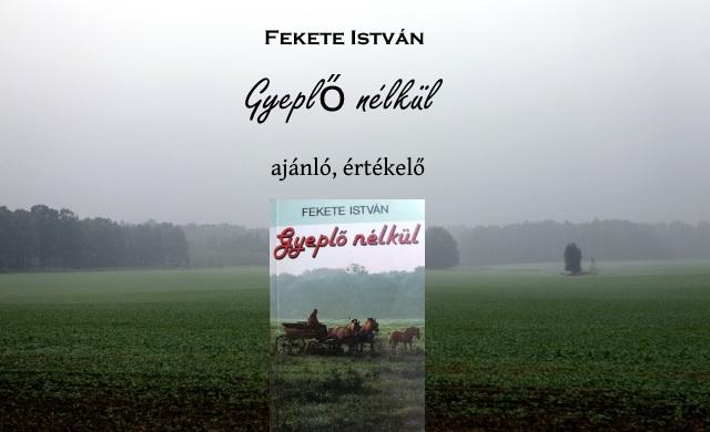 Fekete István Gyeplő nélkül könyv ajánló, értékelő