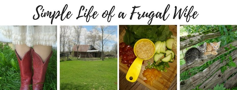 Simple Life of a Frugal Wife