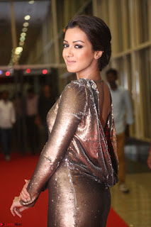 Actress Catherine Tresa in Golden Skin Tight Backless Gown at Gautam Nanda music launchi ~ Exclusive Celebrities Galleries 047.JPG