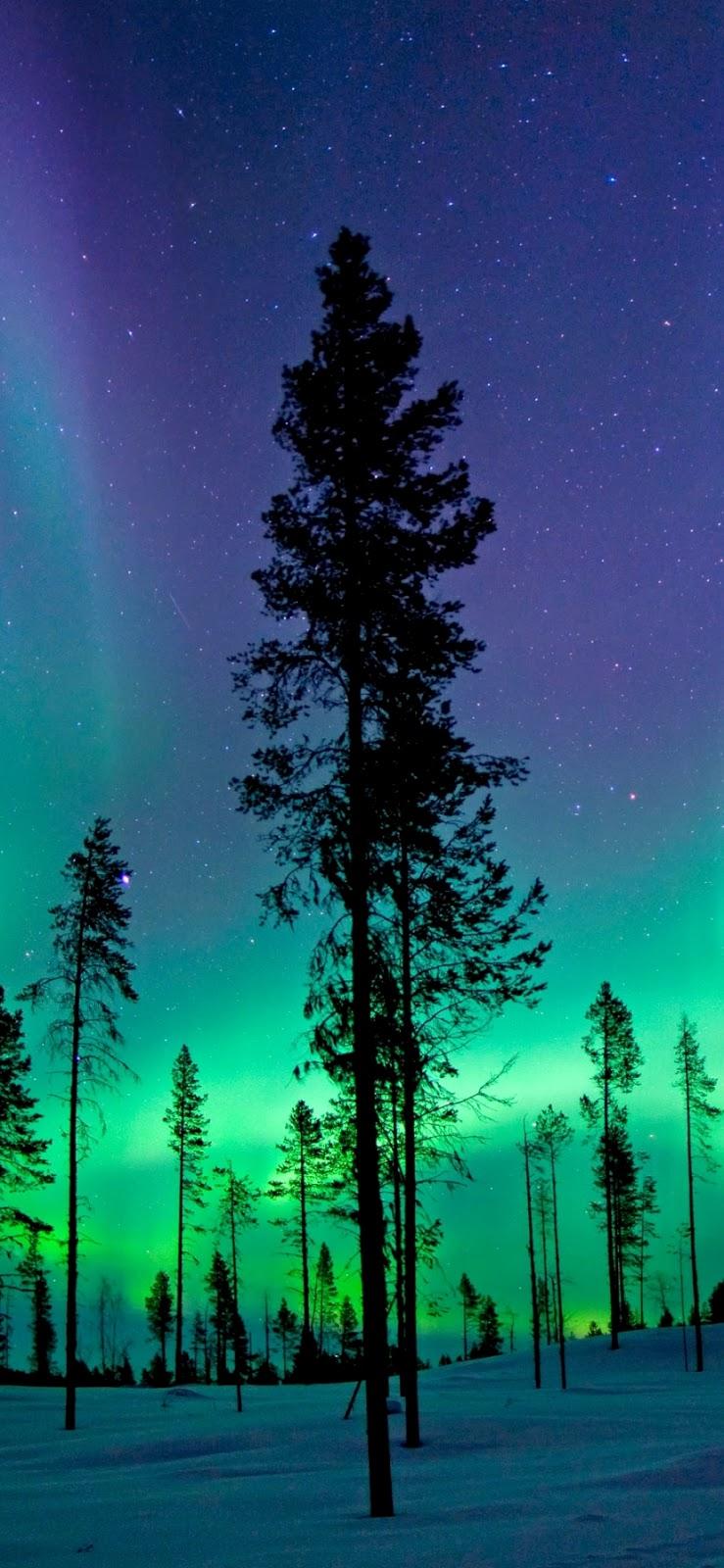 Aurora borealis Mobile Wallpaper