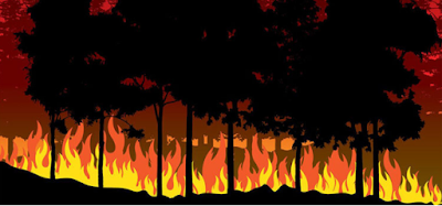 THIS COUNTRY HAD ONE OF ITS WORST FIRE SEASONS EVER.