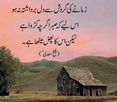 Meri Diary Se Beautiful Islamic Status Quotes