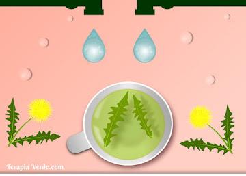 Receita Diurética: Chá de Dente-de-leão