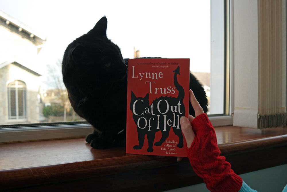 "Black cat with ""Cat Out of Hell"" book"