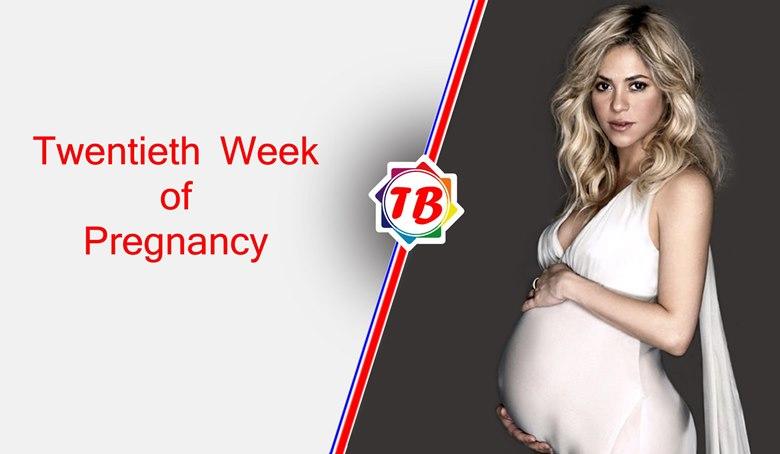 Twentieth Week of Pregnancy