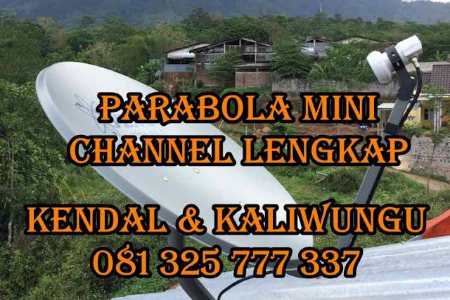 Parabola Mini Kendal & Kaliwungu