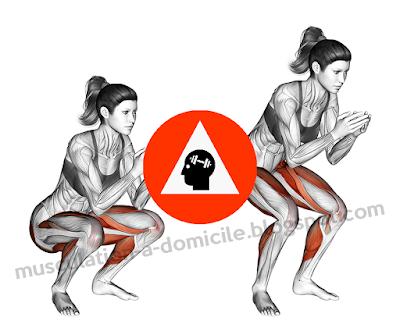 exercice musculation squat poids du corps
