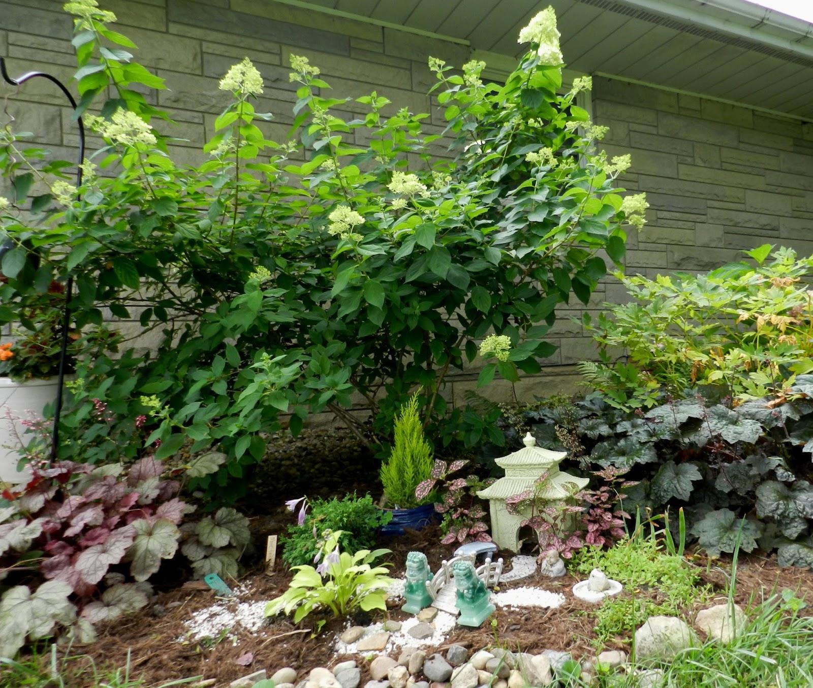 Japanese Garden Indoor: Prairie Rose's Garden: Welcome To My Japanese Garden
