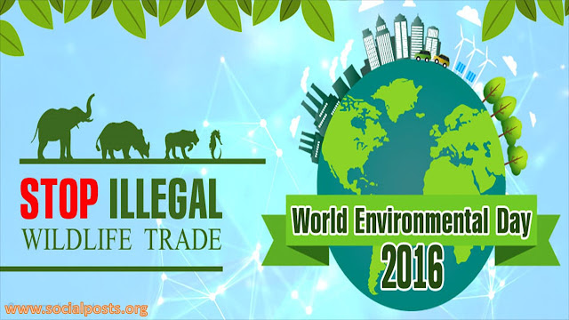 List Of Previous Years Themes Of World Environment Day