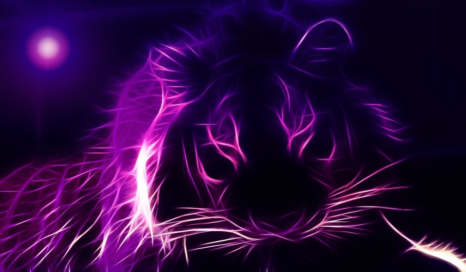 Zwarte achtergrond met paarse kop van leeuw