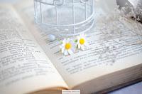 Daisy studs earrings, White chamomile, Meadow flowers, handmade earrings,