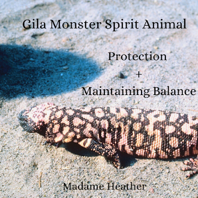 Gila monster medicine