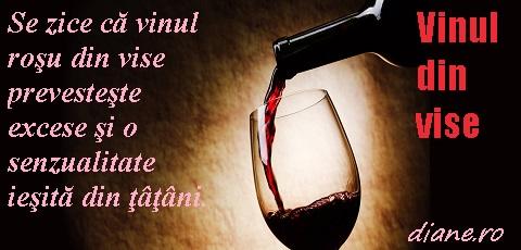 Vise despre vin