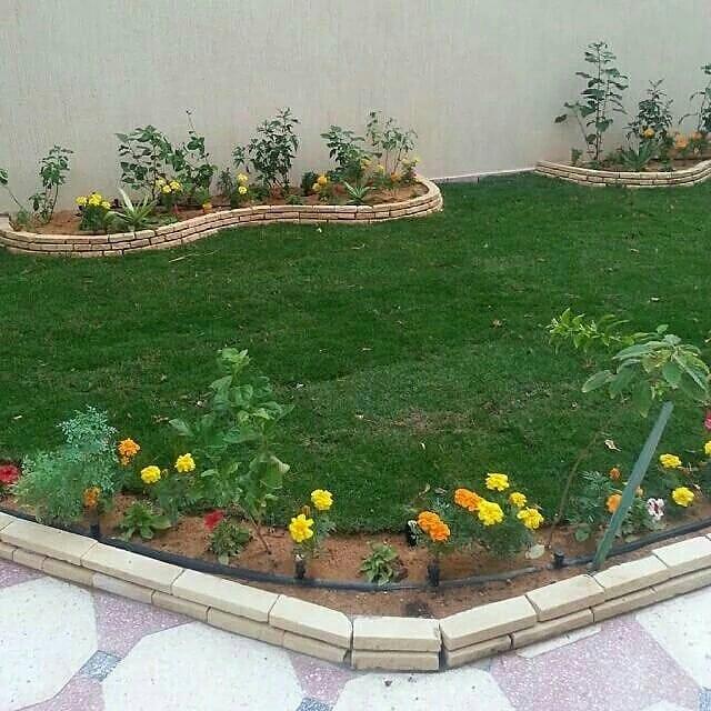 تركيب شبكات الري للمزارع في عجمان