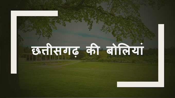 how many languages are spoken in chhattisgarh list them in hindi