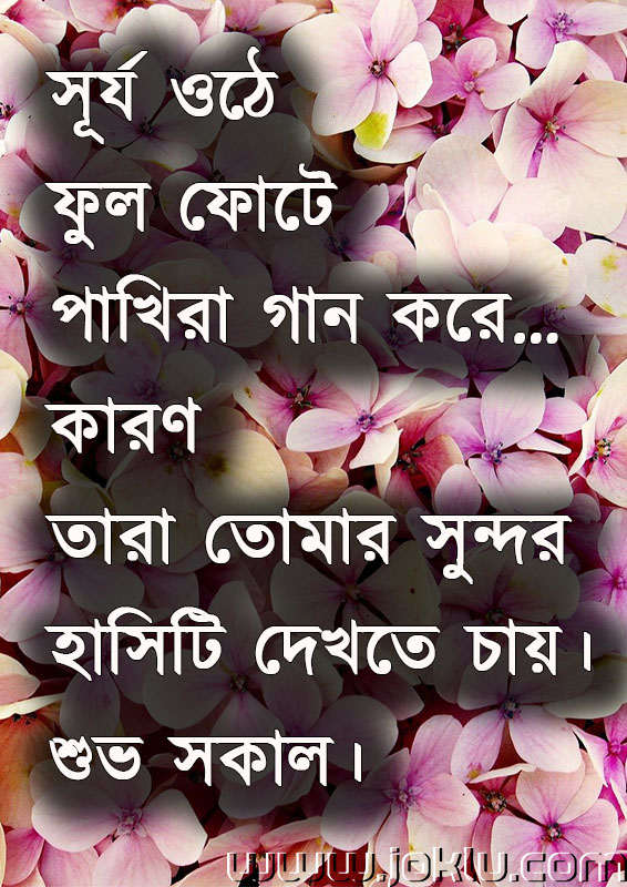 Sun can rise good morning message in Bengali