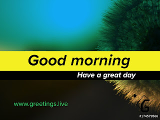 Good morning black colour text on yellow colour background and have a great day white text on black colour back ground and www.greetings.live in green colour
