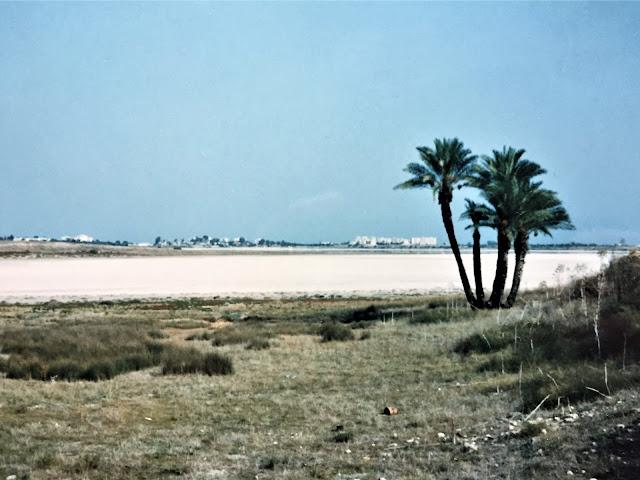 Salzsee in Larnaka