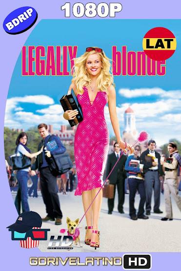 Legalmente Rubia (2001) BDRip 1080p Latino-Ingles MKV