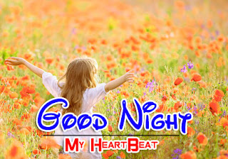 Latest Beautiful Good Night Wallpaper Free Download %2B82