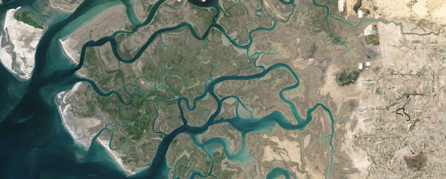 Citra Satelit Landsat 5 Wilayah Sungai Indus, Pakistan