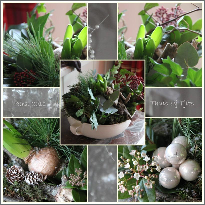 Thuis Bij Tjits: Kerstgroen